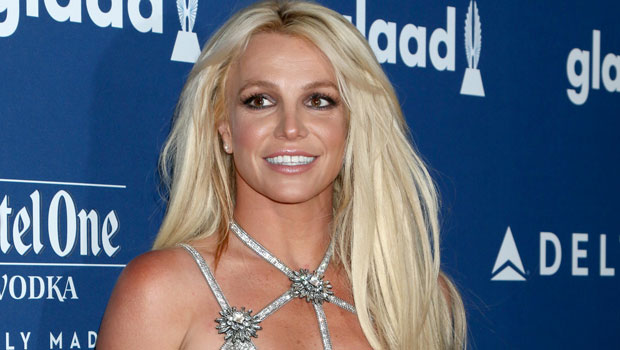 Britney Spears Confirms She Wants Another Baby But Conservators Won't Allow It