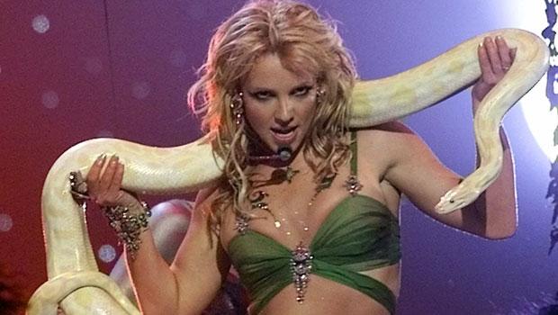Britney Spears Snakeskin Catsuit Pics