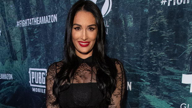 Nikki Bella Posts Sweet Tribute For Her 'Wild' Son Matteo's 1st Birthday: 'You Have My Heart' — Photos