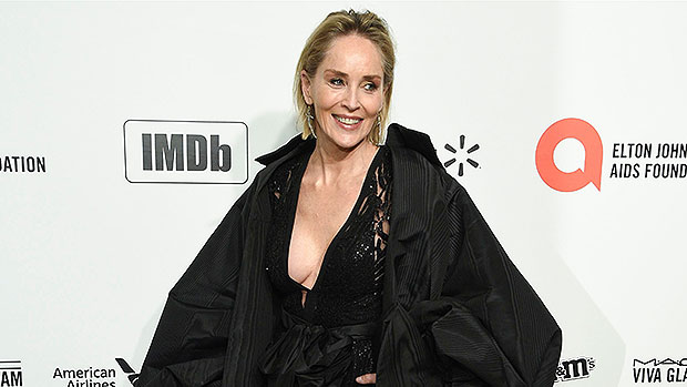 Sharon Stone, 63, Looks Sensational In Plunging Black Swimsuit As She Sunbathes — Pics.jpg
