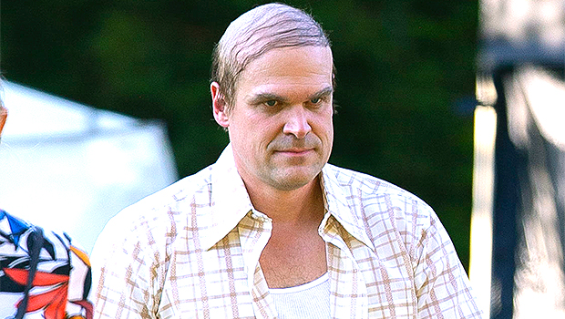 David Harbour Looks Unrecognizable Without Hair While Filming 'We Have A Ghost' — Photos.jpg
