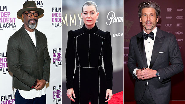Isaiah Washington Claims Ellen Pompeo Was Paid To Be Silent About Patrick Dempsey's Behavior.jpg