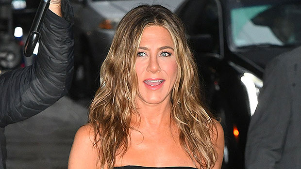 Jennifer Aniston's Adorable Dog Chesterfield Takes Over IG Video As She Shows Off Hair Product.jpg